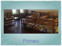Primary2